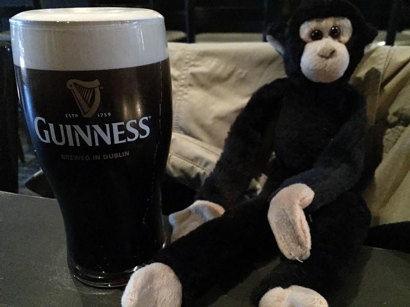 Monkey likes Guinness
