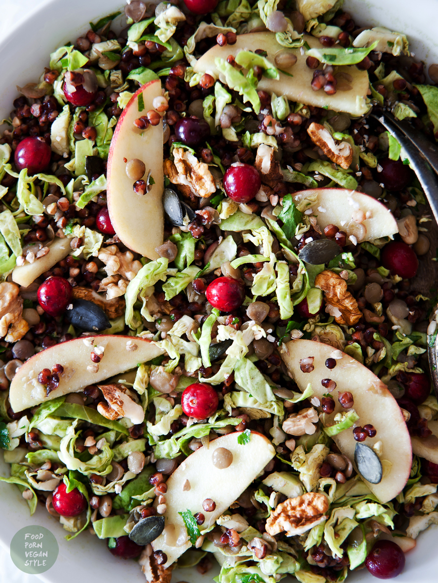 VEGAN AUTUMN SALAD WITH SORGHUM GRAINS, LENTILS, BRUSSELS SPROUTS, CRANBERRIES AND PURYA! RAW PUMPKIN SEED OIL