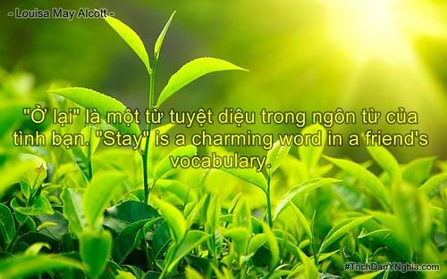 """""""Ở lại"""" là một từ tuyệt diệu trong ngôn từ của tình bạn. """"Stay"""" is a charming"""