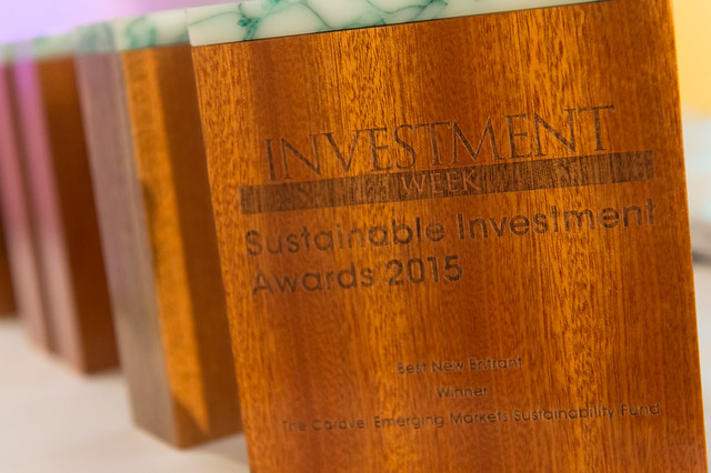 Sustainable Investment Awards 2015