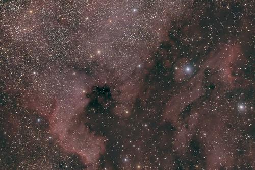 Nebulosa de Nord-amèrica