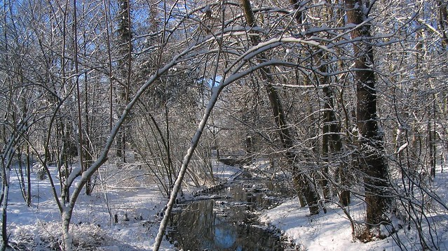 Packereigraben im Winter, Canon POWERSHOT A70