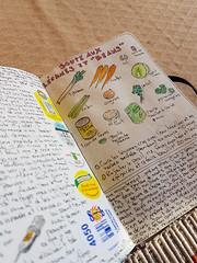 Journal soup recipe
