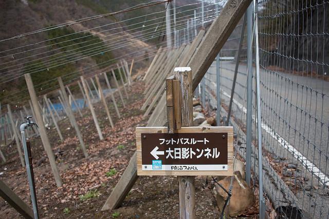 20150412-甲州高尾山-0588.jpg