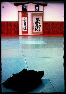 Vanadis Aikido dojo