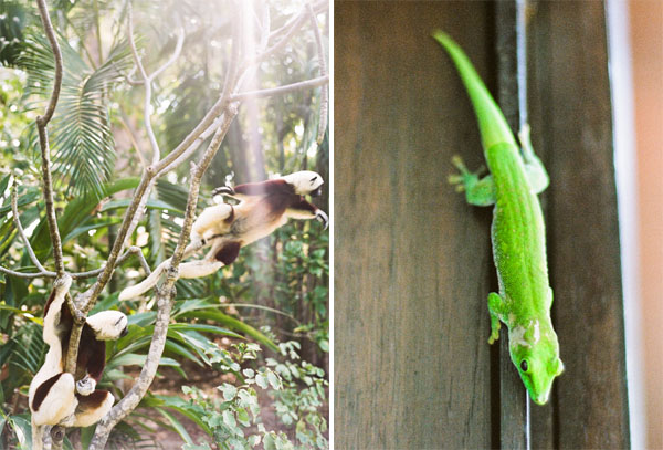 RYALE_Madagascar_Blog1_026