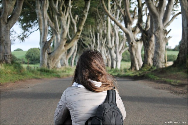 The Dark Hedges, viaggio in Irlanda