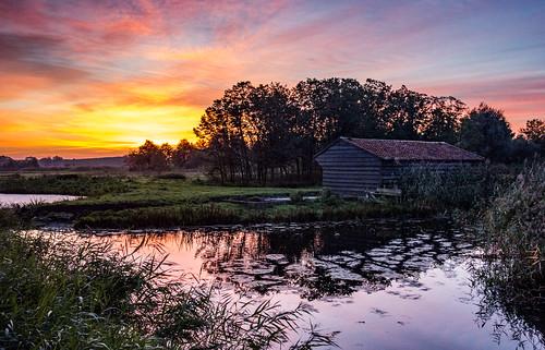trees water netherlands sunrise dawn shed stable waterscape sundawn middendelfland ruralscene nederlandvandaag