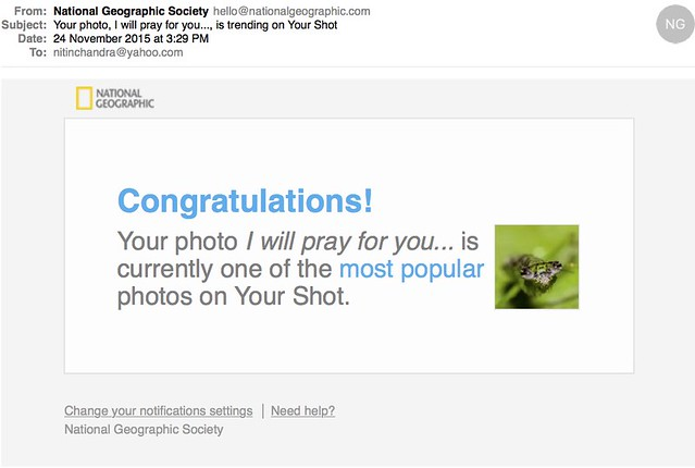 Your photo I will pray for you is trending on Your Shot