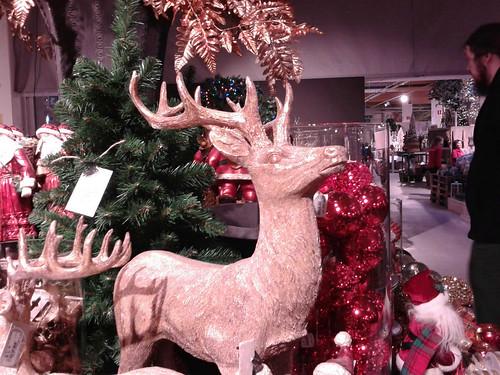 #IggleXmasHunt day 5: reindeer