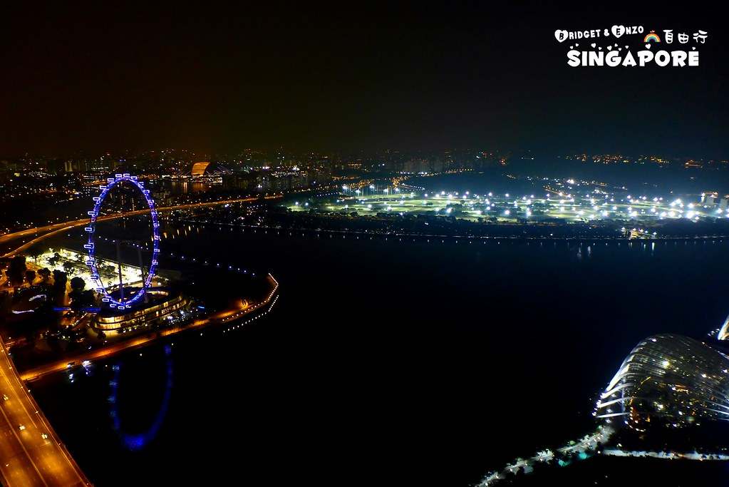 SANDS SKYPARK夜景6