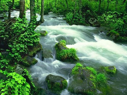 साफ पानी का सपना
