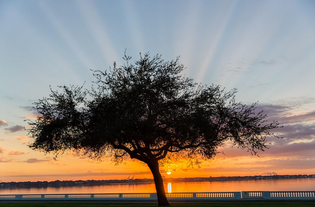 Bayshore Sunrise with Crepuscular Rays