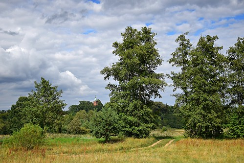 landscape view summer nature path tree trees plants green road church tower clouds sky blue strońsko łódzkie lodzkie polska poland dolinawarty