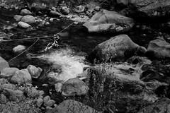 Crossing Beas River