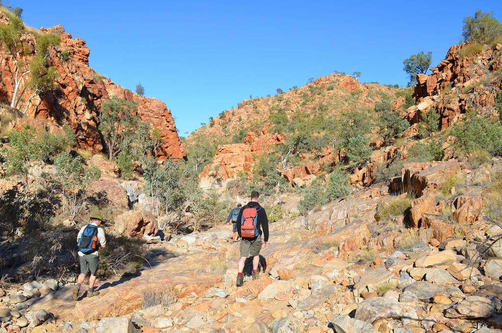 Jay Creek - Larapinta Trail