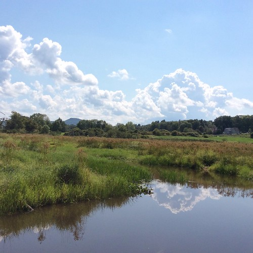 Hop Brook, Amherst, MA