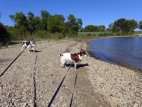 2015-09-30 - Walking at the Lake - 0064 [flickr]