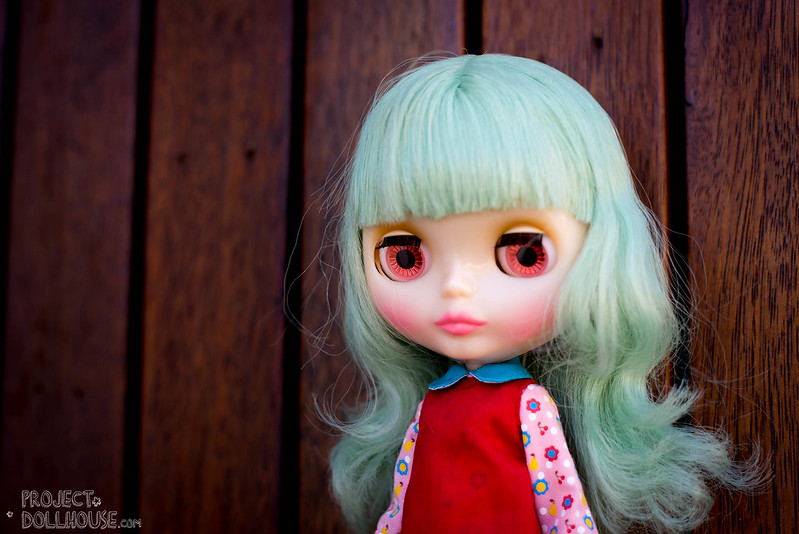 Oh My! Miss Sally Rice enters the House – Project Doll House
