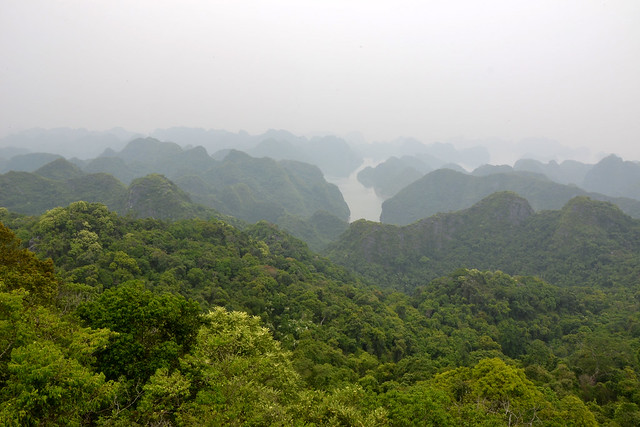 Cat Ba views