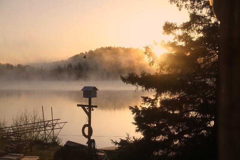 Bonus foggy dawn5