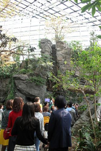 Osaka Aquarium Jungle