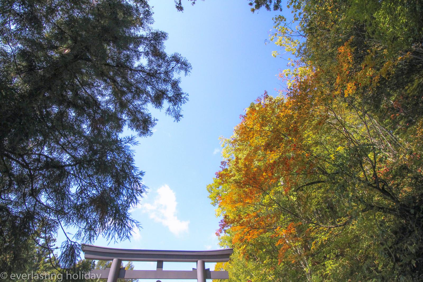 戸隠神社 Togakushi-jinja Shrine-0002
