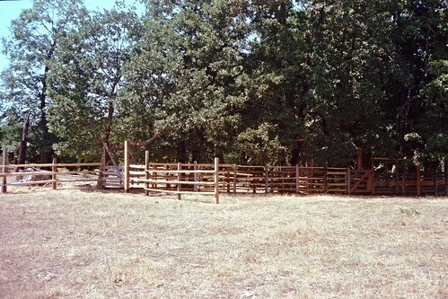 Kerrydale Ranch-Black Walnut Corrals