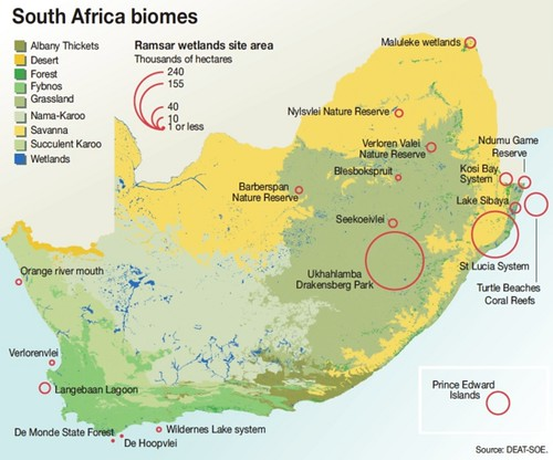 biomes in south africa A biome / ˈ b aɪ oʊ m / is a temperate south america temperate southern africa temperate australasia southern ocean endolithic biomes the endolithic.