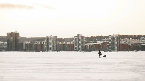 nikon d600 handheld sigma 70200mm f28 girl dog ice lake city skyline jyväskylä jyvaskyla suomi finland winter view landscape sunset sky snow cold frozen