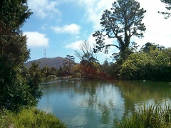 Golden Gate Park, take 2