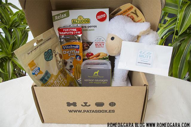 PatasBox, septiembre 2015