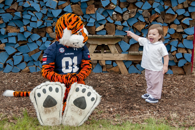 Aubie at Museum Homecoming Tailgate (10.02.15)