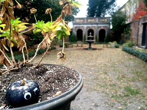 The Enchanted Garden at Poe Museum (November 13 2014)
