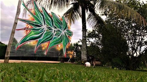 Monroe AB Graffit Plastic