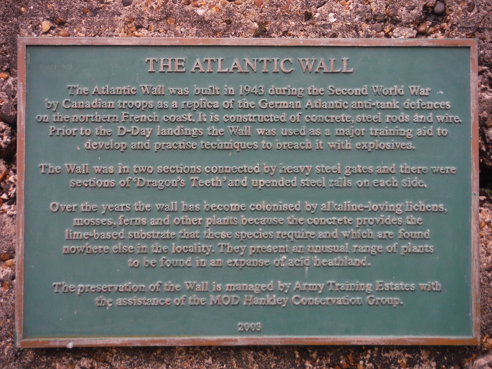 Explanatory Plaque, The Atlantic Wall, Hankley Common SWC Walk 144 Haslemere to Farnham - Atlantic Wall Extension