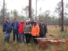 BLM Helping to Re-Establish Longleaf Pine in the Florida Panhandle