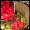#Homemade #Zucchini and #Tomatoes #CucinaDelloZio - then the tomatoes
