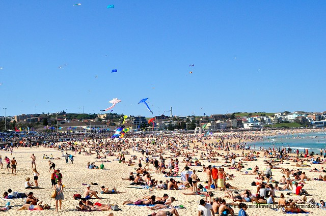Kite Festival at Bondi Beach