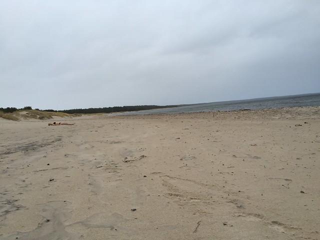 Böda Sand December 2015