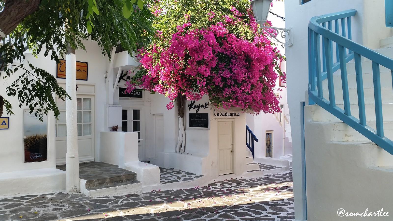 Mykonos Morning2