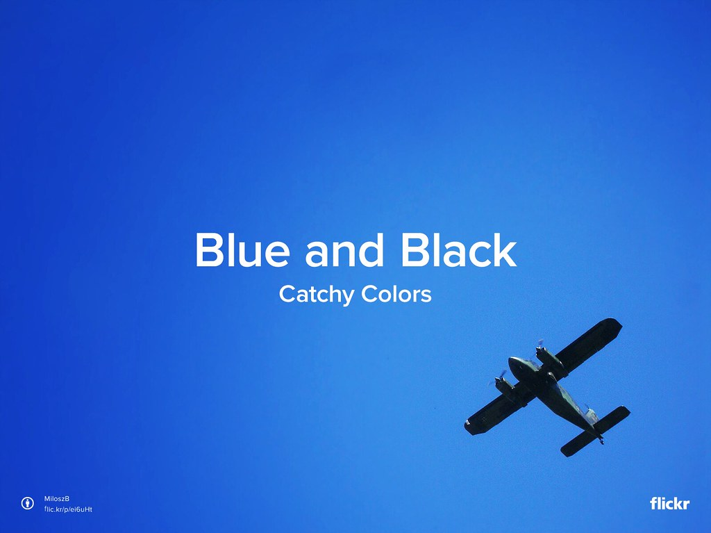 Catchy Colors: Blue and Black