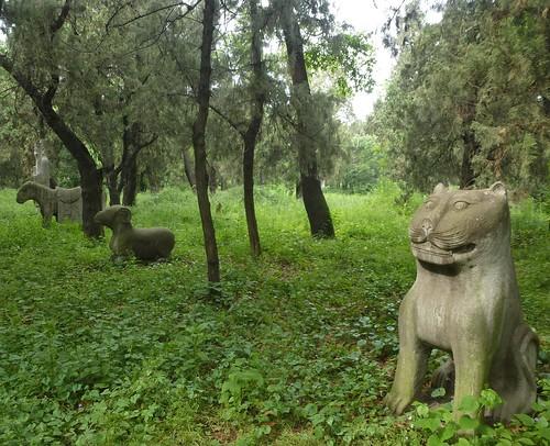 CH-Qufu-Confucius-Cimetière-Parc (4)