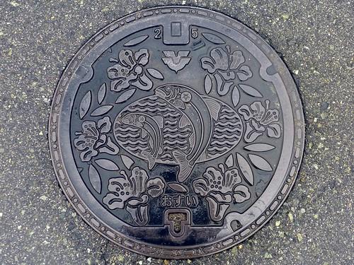 Kōchi Hiroshima, manhole cover (広島県河内町のマンホール)