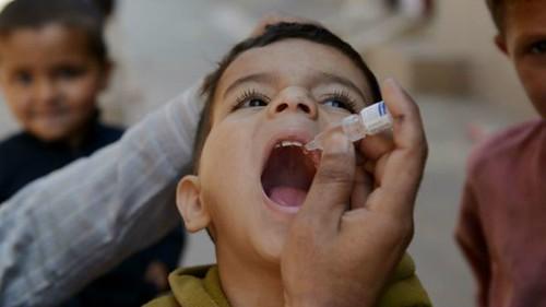 Чиновниця запевняє: вакцина якісна