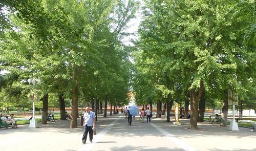 CH-Beijing-Parc Zhongshan (3)