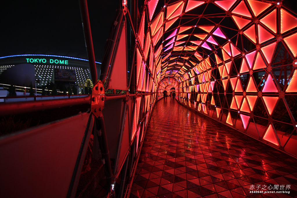Tokyo Winter Illuminations- Tokyo Dome City-IMG_0670034