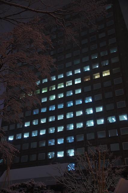 札幌市役所本庁舎 クリスマスツリー_06