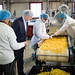 """On """"Jobs that Pay"""" Tour, Governor Wolf Visits Jyoti Natural Foods in Sharon Hill"""