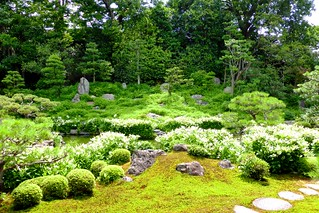 Ryosoku-in, Garden -1 (July 2013)